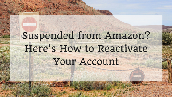 AMAZON SELLER ACCOUNT REACTIVATION
